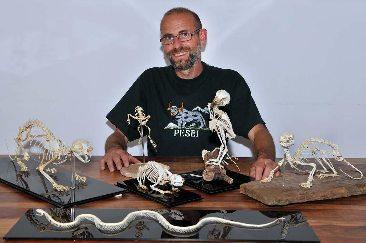 Collezione di  Scheletri Animali di Amedeo Materassi. Brescia Giugno 2013. Ph Christian Penocchio